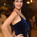 Actress-kashish-vohra-Latest-Photoshoot38